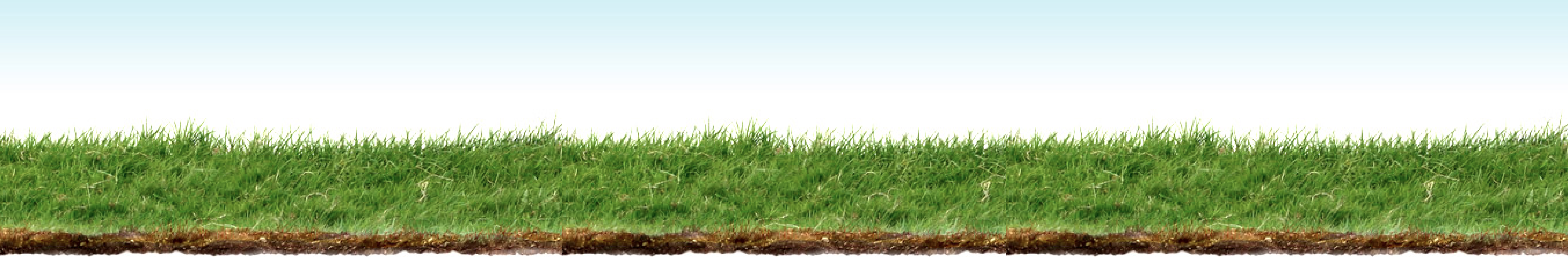 Grass Background Png Grass-background.png